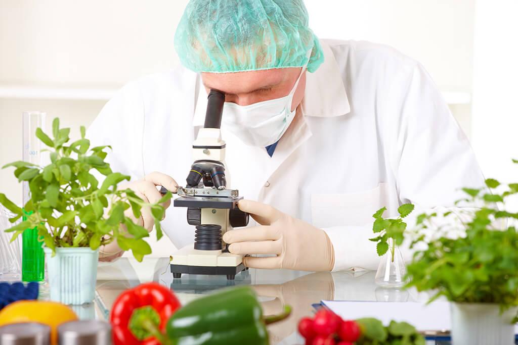 gıda mühendisi